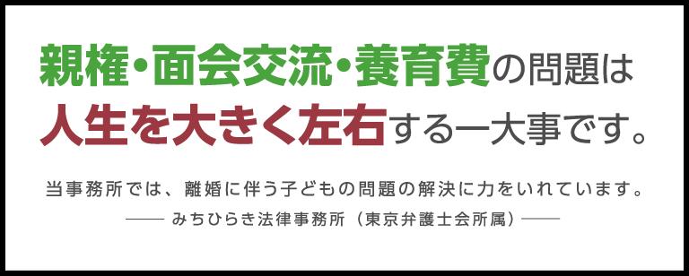 親権・面会交流・養育費の問題は人生を大きく左右する一大事です。 当事務所では、離婚に伴う子どもの問題の解決に力をいれています。みちひらき法律事務所(東京弁護士会所属)
